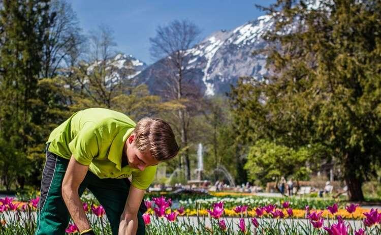 Frühlingsarbeiten im Kurgarten